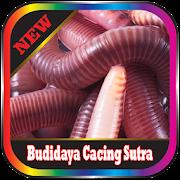 Silk worm cultivation Offline