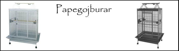 Papegojburar