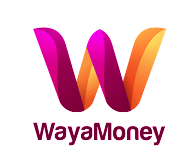 WayaMoney, Meet the founders, Black Founders Fund Africa, Google for Startups, Campus