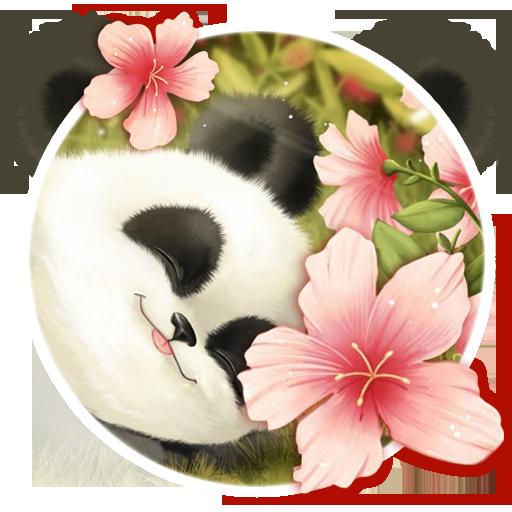 Cute Baby Panda Theme