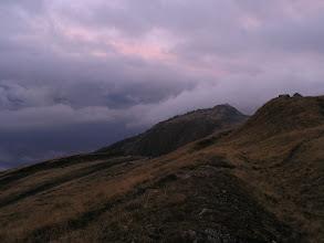 Photo: Alpine grassland