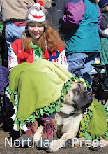 Photo: Courtney Skluzacek, of Pequot Lakes, and her Mastiff, Boris, had a front row seat for watching the parade - photo by Donna Evans