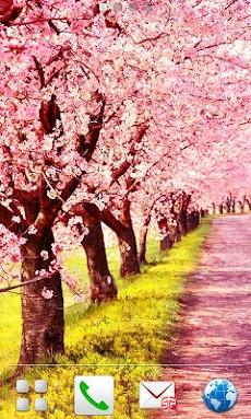 桜路のおすすめ画像4