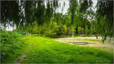 "Photo: Salcie (Salix) - Turda, Parcul Central, vazut de sub coroana salciei.  ""Salcia, izvor nesecat de energie pozitiva""  :)  -  2019.05.16"