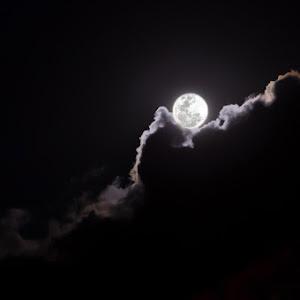 magic-moon-6.jpg