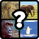 Ghiceste Animalul Android apk