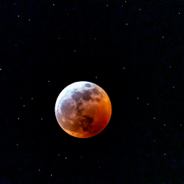 by Keith Sutherland - Uncategorized All Uncategorized ( sky, moon, night, stars, eclipse )