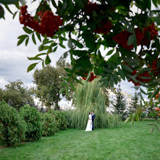 Wedding photographer Svetlana Trifonova (trifoto). Photo of 01.11.2016
