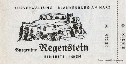 Photo: Blankenburg. Burchtruïne Regenstein. Ticket.