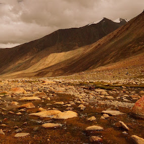 The Beauty by Abhishek Majumdar - Landscapes Mountains & Hills