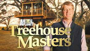 AJ's Wish Treehouse thumbnail