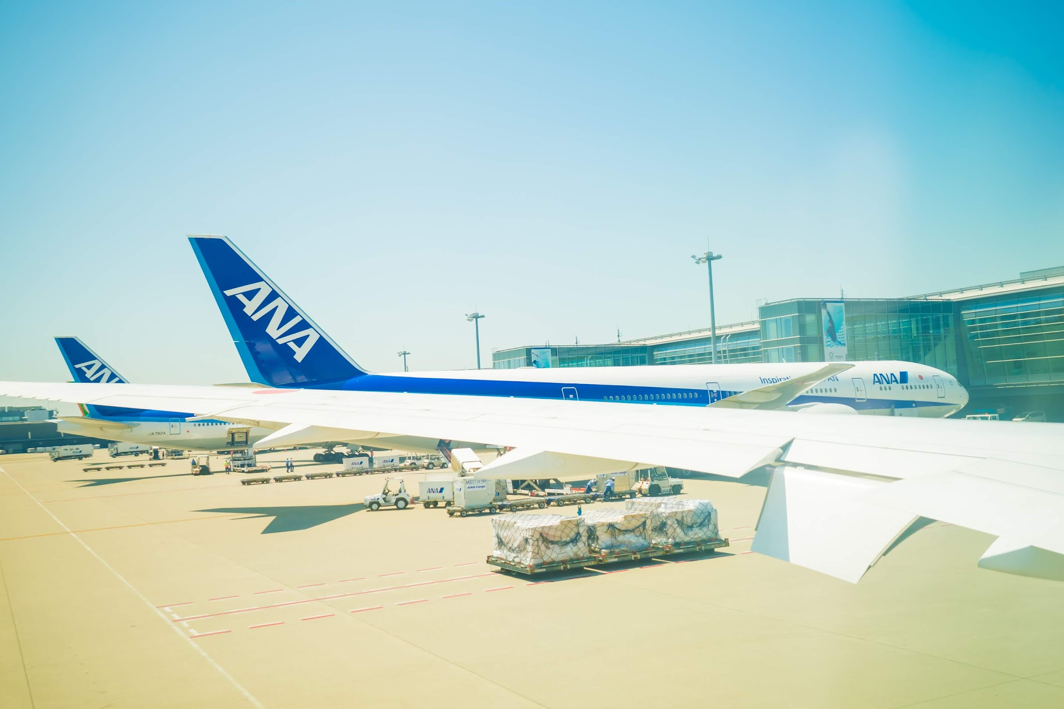 ANA Haneda International flight3