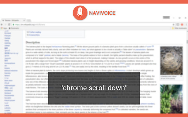 NaviVoice: Voice Input Productivity Assistant