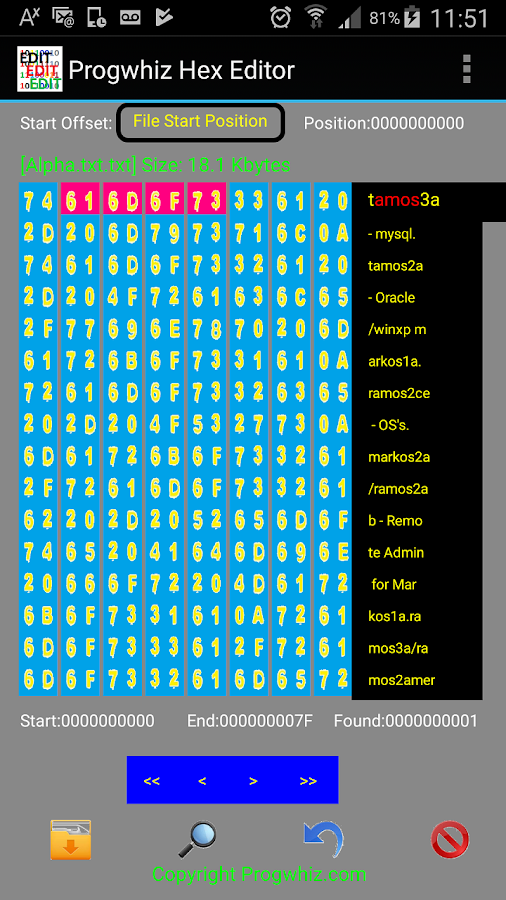 Hex Editor- screenshot