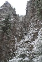 Photo: Na to, že je začiatok januára, snehu je žalostne málo
