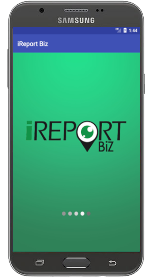 iReport BiZ- screenshot