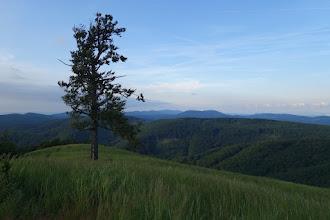 Photo: Večerní pohled na Malé Karpaty z vrcholu Skalnatá (704 m)