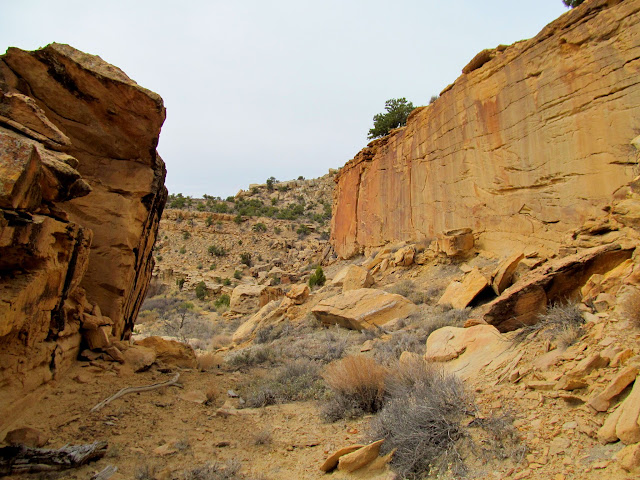 Route of stock trail through the cliffs