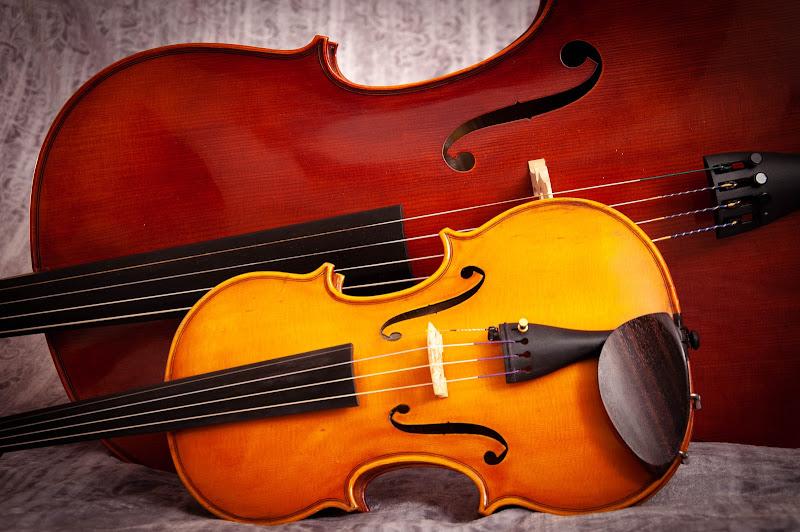 Violino e violoncello di Giomi