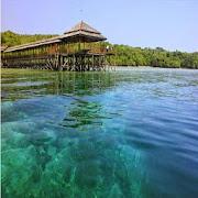 Tourism Island of Sulawesi and Papua (Indonesia)