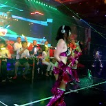 danceshow at the Robot Restaurant in Kabukicho in Kabukicho, Tokyo, Japan