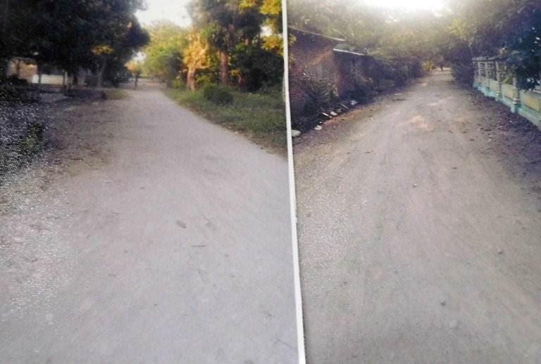 Profil Desa Kauman Ngawi