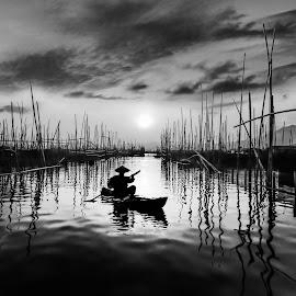 by Luna Almira  Ali - Black & White Landscapes