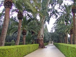 Photo: Nevertheless, a few photos were taken of the gorgeous gardens.