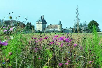 château à Pioussay (79)