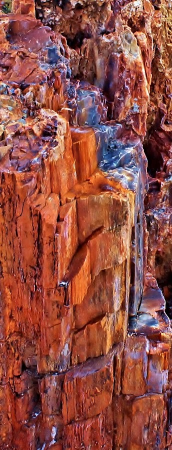 Wood to Minerals-vlr by Jim Johnston - Nature Up Close Rock & Stone