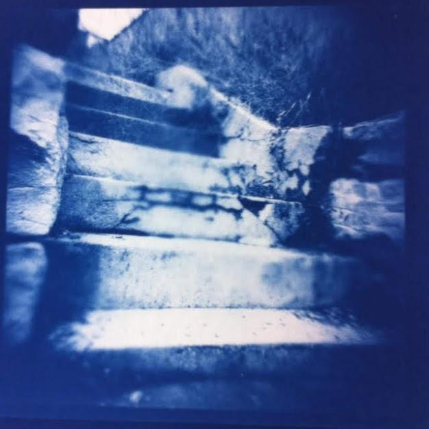 Cyanotype by Erica Popp