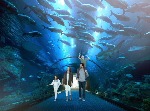 The Dubai Aquarium offers spectacular ocean and marine life exhibits.