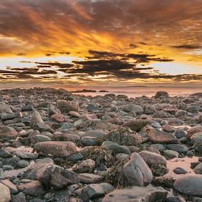 Rocky Shore by Michael Otero - Landscapes Sunsets & Sunrises ( sand, polarizer, beach, rye beach, nd filter )