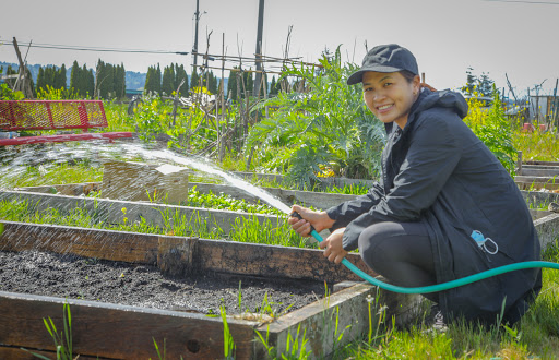 Gardening with family at the Leo Street P-Patch reminds Edenkeo Duangprasert of childhood in Laos