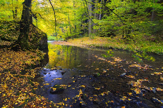 Photo: Autumn image in spring ;) Something from autumn collection today.
