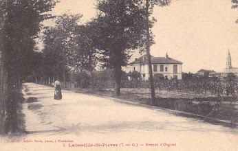 Photo: Labastide-Saint-Pierre (82) - Avenue d'Orgueil - Carte écrite le 11 août  1917