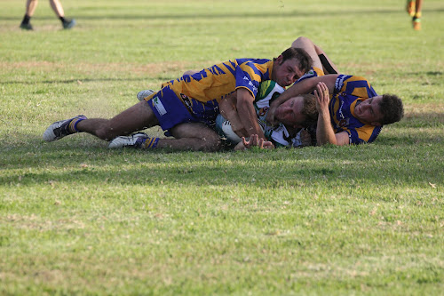 Wee Waa's Damien Chown crashes over the line against Bundarra on Saturday after an inspiring run but is somehow denied what seemed to be a clear try.