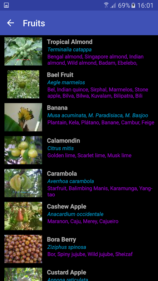 Tropical Fruits and Vegetables- screenshot