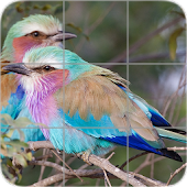 Animals Puzzle: Birds
