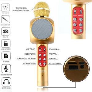 Microfon karaoke Bluetooth Radio disco LED fara fir WS-1816