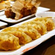 Deep Fried Pork Gyoza