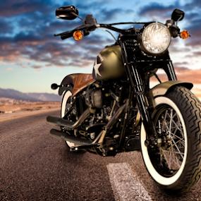 Captain America by David Lawrence - Transportation Motorcycles ( harley, desert, bike, white walls, sunset, biker, davidson, sport, motorcycle, road )