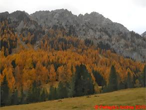 Photo: Mar_DSCN3069 autunno dolomitico
