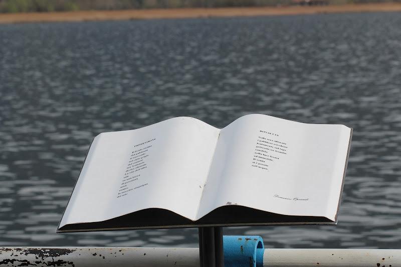 La leggerezza della poesia di Photolo