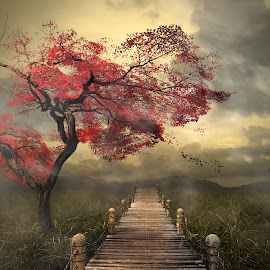 go ahead by Even Liu - Digital Art Places ( photomanipulation, manipulation,  )
