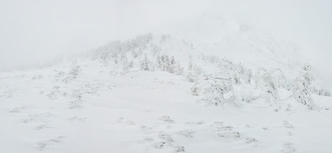 Photo: белое царство