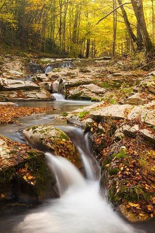 秋天的風景 2