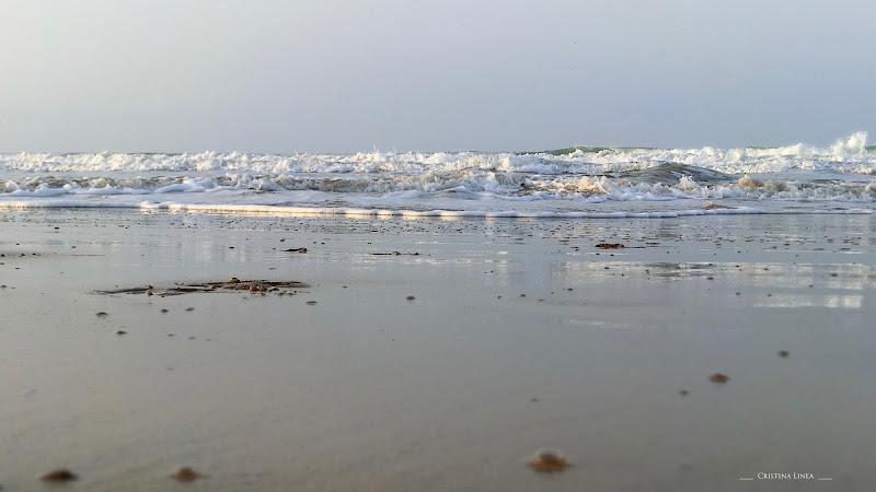 All'inizio fu il mare .....era estate! di Cri_cri