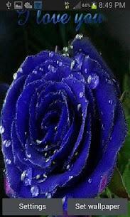 Dewy Blue Rose LWP 3 Latest MOD APK 1