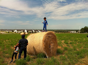 Photo: We saw lots of rolled hay bales during our road trip